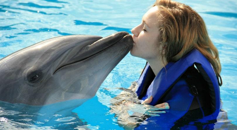 Дельфинарий Паттайя