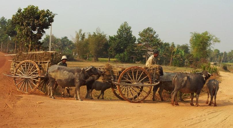 Cambodia Jeep Tour